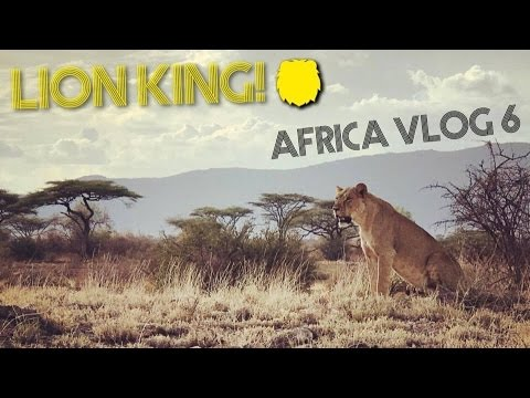 WE SAW LIONS 🐯👀  Africa Vlog #6 – Safari Game Drive at Buffalo Springs National Park in KENYA