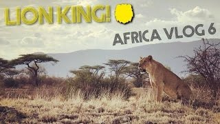 WE SAW LIONS ??  Africa Vlog #6 – Safari Game Drive at Buffalo Springs National Park in KENYA
