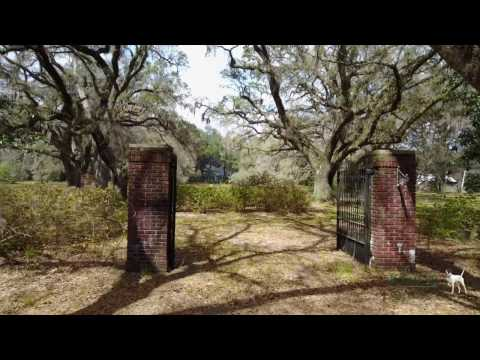 Pleasant Hill Plantation - 1,845 +/- Acre Lowcountry, South Carolina Plantation