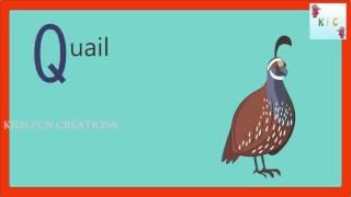 A-Z alfabe sevimli karikatür hayvanlar|Hareketli görüntü ile tasarım ayarlar.