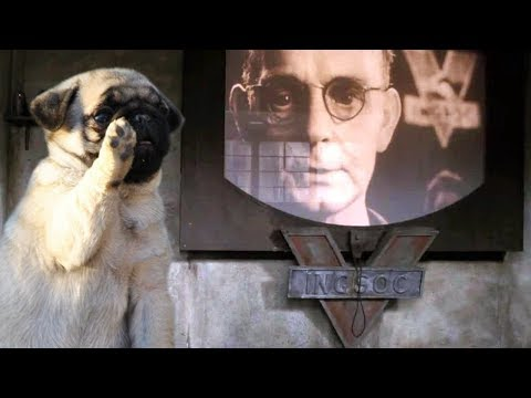 pugs-german-dictators-and-free-hate-speech-with-count-dankula