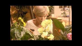 Blumen-Talk - Ladykracher