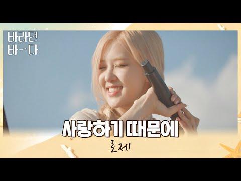 노래해줘서 고마워..❣️ 마음을 울리는 로제(ROSÉ)의 〈사랑하기 때문에〉♬ 바라던 바다 (sea of hope) 4회   JTBC 210720 방송