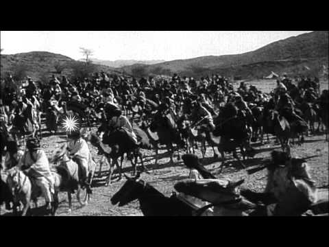 The Arab revolt against the Turks during World War I HD Stock Footage