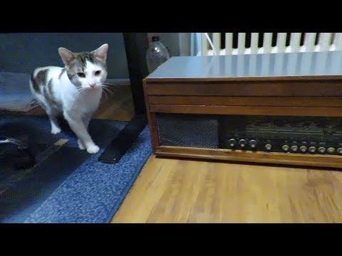 Vintage - Ep. 01: Radio cu pick-up Pacific 3 (1978)
