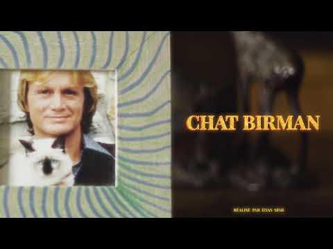 Youtube: Eddy Woogy – Chat Birman