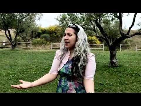 Download Mi querido padre/ por Raquel Colón Ortega