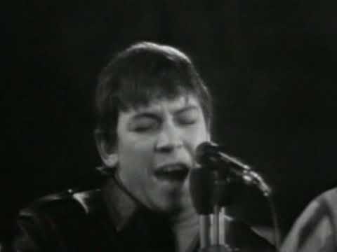 The Animals - Roadrunner - 1967