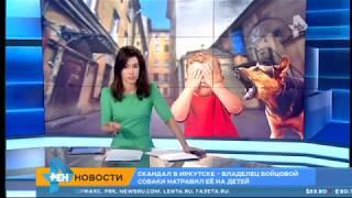 В Иркутске мужчина прирезал пса, которого натравили на его детей