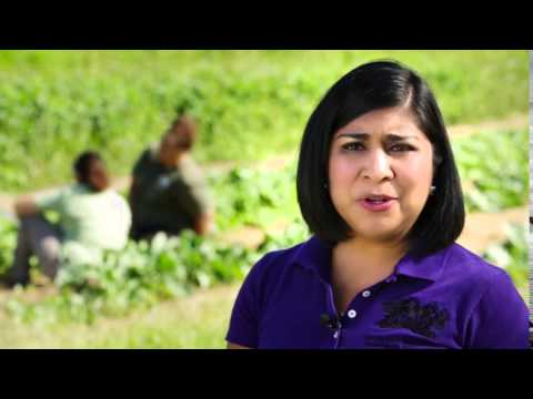 EPA's Revised Worker Protection Standard: Thoughts from a Former Farmworker Clip