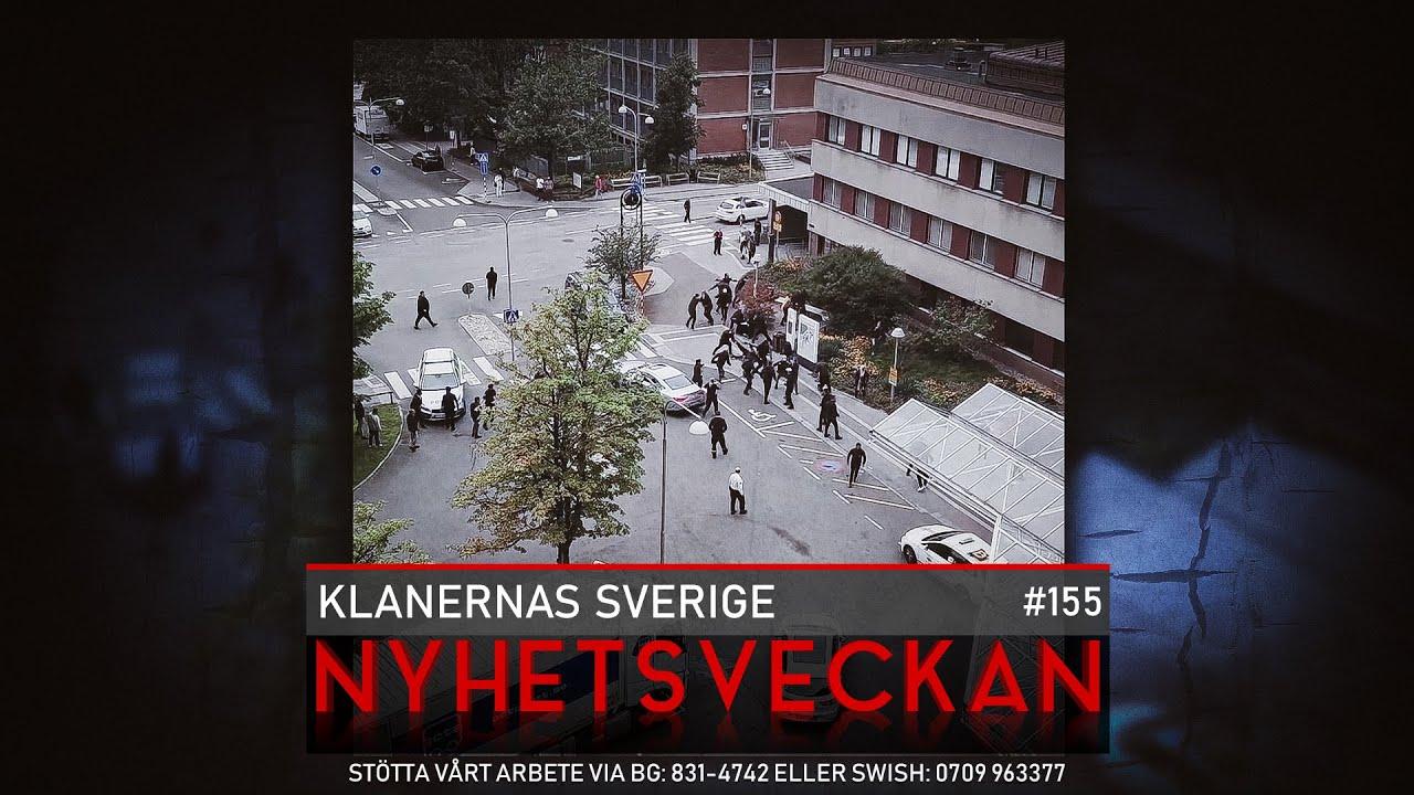 Download Ingrid & Maria: Klanernas Sverige, råttorna lämnar, The Walking Dead - Nyhetsveckan #155