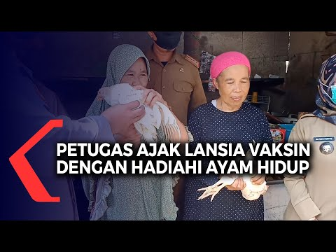 Elderly people in West Java gifted live chickens so they won't cluck their way out of COVID-19 jabs