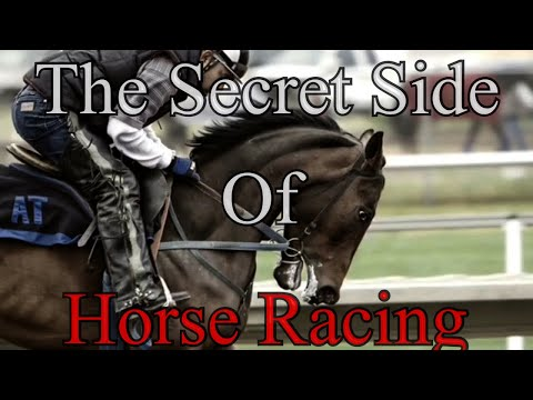 The Secret Side Behind Horse Racing