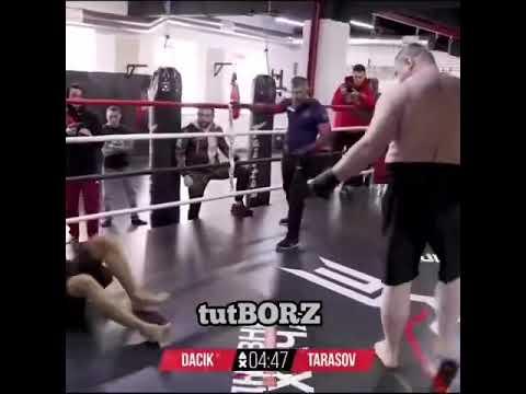 Тарасов чуть не вылетел с ринга от удара Дацика!