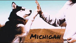 Michigan | Tricks & Fun  Siberian Husky