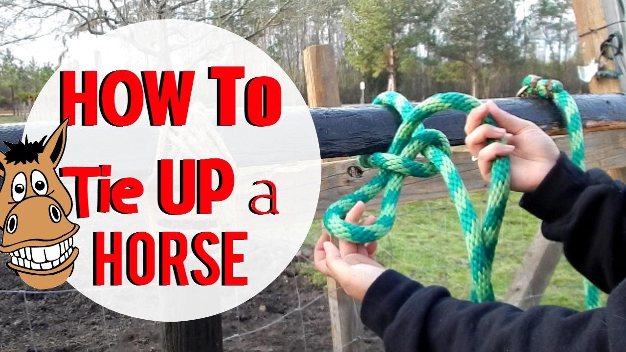 Tying Rings For Horses