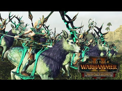 Sisters of the Thorn - Wood Elves Skirmishing - Total War Warhammer 2 Mortal Empires