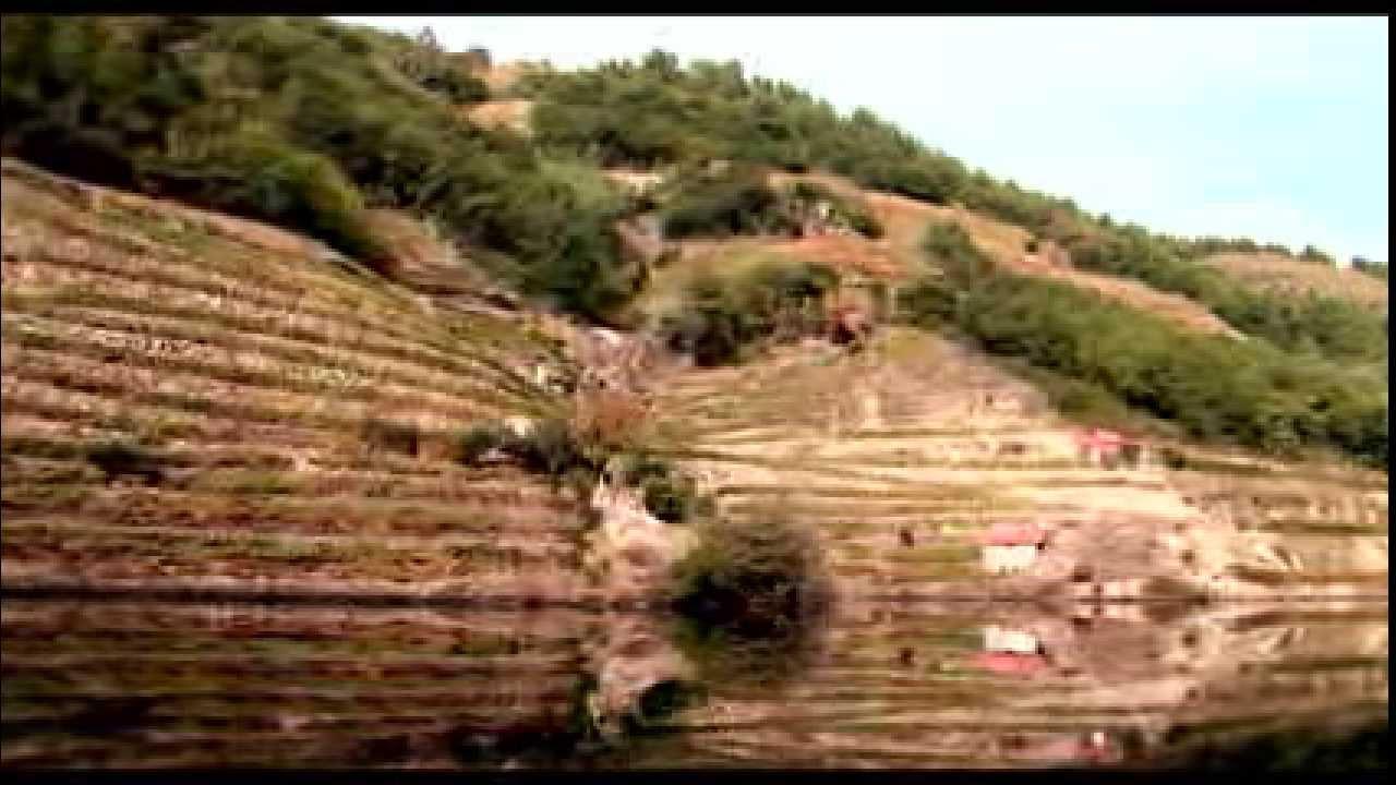 Ribeira Sacra Bodega Don Bernardino Youtube