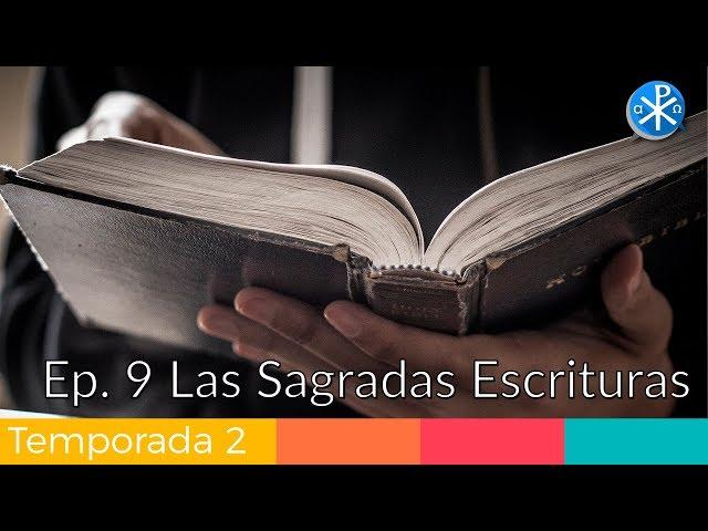 Las Sagradas Escrituras - Perseverancia