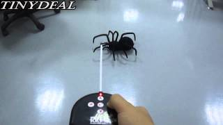 (FIY-97812) 27MHZ Radio Control RC Black Widow