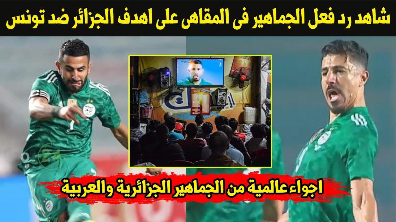 شاهد رد فعل الجماهير فى المقاهى على هدف محرز ضد تونس ورقص وغناء لاعبى الجزائر فى الاتوبيس