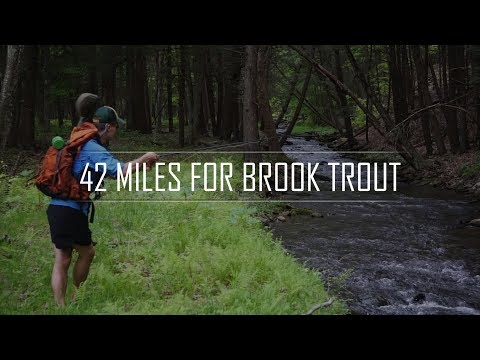 42 Miles For Brook Trout | Backpacking And Fly Fishing The PA Back Country