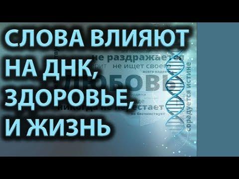 О СИЛЕ НАШИХ СЛОВ    Иосиф  Бейня