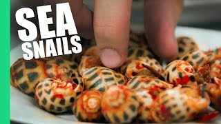 Sea Snails in Saigon, Vietnam! (Oc Dao)
