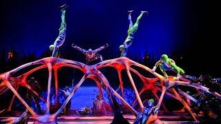 Цирк Дю Солей Шоу Тотем Сочи. Cirque du Soleil show Totem