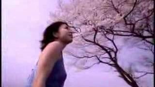 Bird (バード) - 桜 (Sakura)