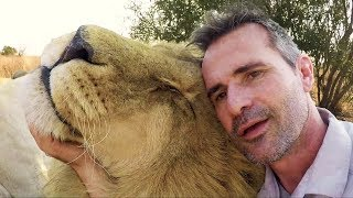 siam-s-challenge-the-lion-whisperer