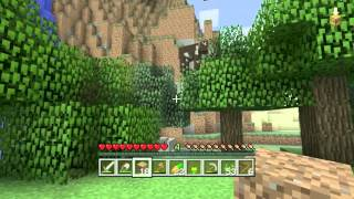 Minecraft (Xbox360 Edition) Survival Let