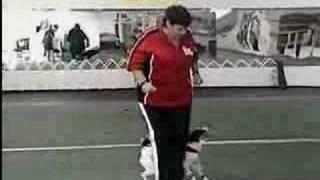 Dancing Dog | Martha Stewart