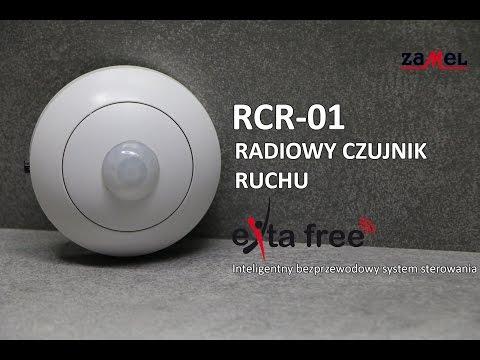 RCR-01