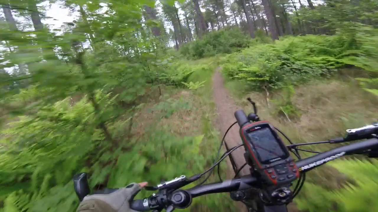 Tentsmuir Single Track & Tentsmuir Single Track - YouTube
