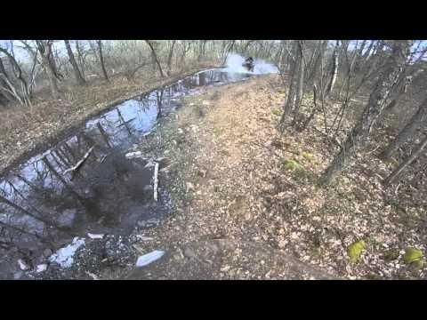 ATV Dixon Miller Tom on Dyson swamp