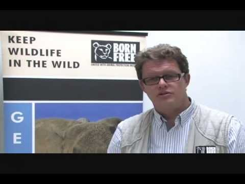 Will Travers, CEO Gives a Born Free USA Overview