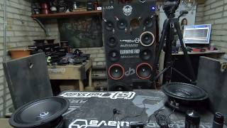 URAL AS-PT200 PATRIOT MIDBASS vs. Deaf Bonce DB-W80 vs. Pride W8