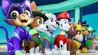 Paw Patrol | All Mighty Pups On a Roll Rescue Mission | Mighty Chase, Marshall in Action Nick Jr. HD