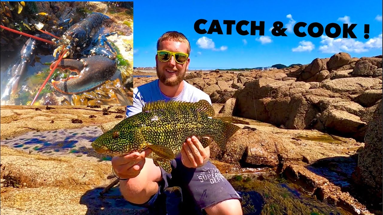 LOBSTER - Catch Clean Cook ! Texas Rigging For WRASSE