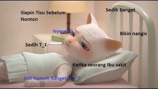 Siapkan Tisu Sebelum Nonton Kisah Sedih Keluarga Kucing