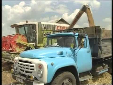 Владельцы малых ферм теперь могут официально регистрировать свое хозяйство