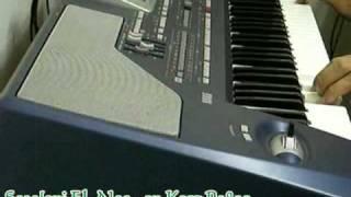 Sa2aloni EL Nas by Khalil Jarjoura سالوني الناس - عزف خليل جرجورة