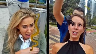 Which insect are you scared of? - scaring girls with insects prank