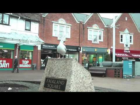 Poole town centre £1.2 million investment set for vote