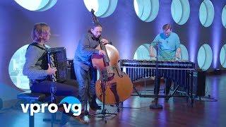 TRIFID - Moonshine Song (live)