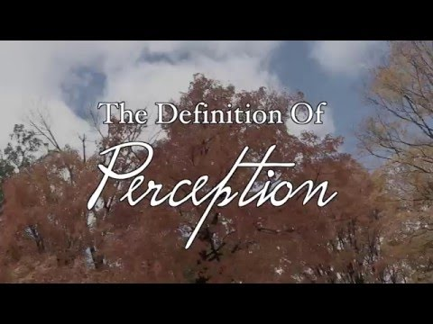 Perception - Short Film