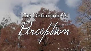 Perception - Short Film