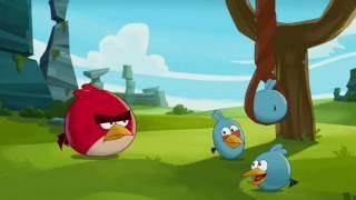 Злые птички - Энгри Бердс - Рогатка для начинающих (S1E11) || Angry birds Toons
