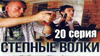 20 серия из 24  (детектив, боевик, криминальный сериал)